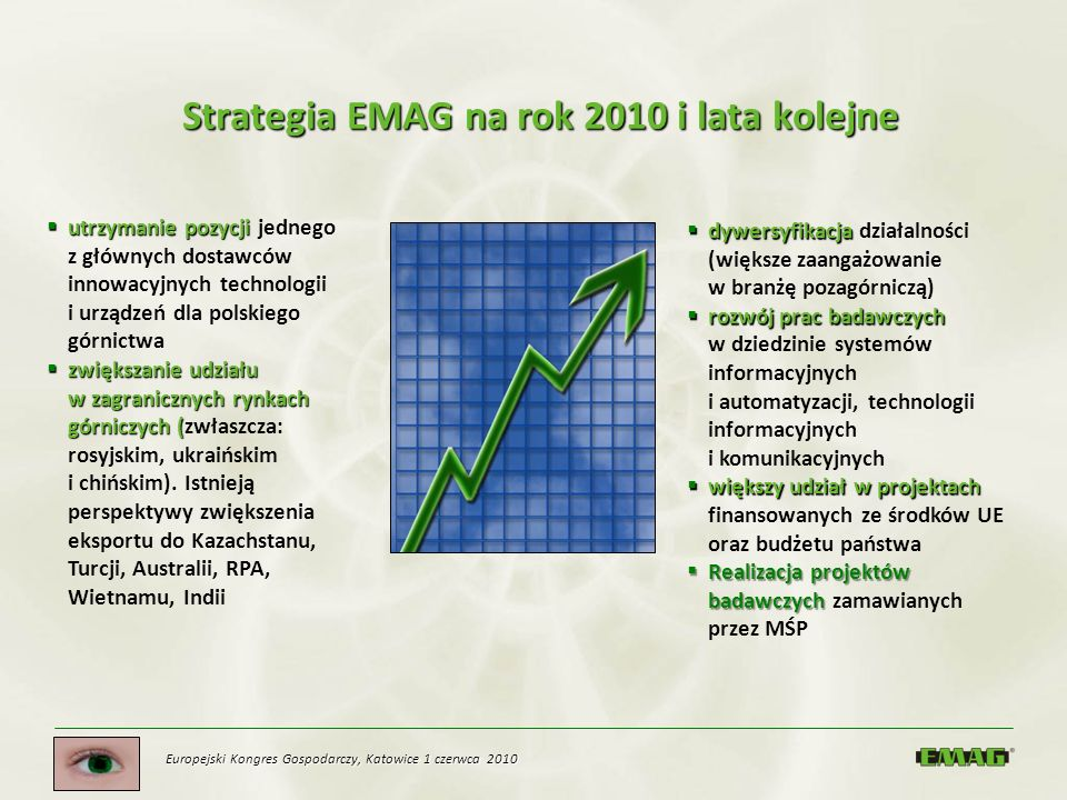 Strategia EMAG na rok 2010 i lata kolejne