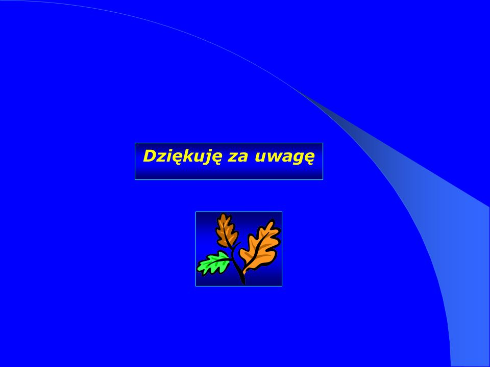 Dziękuję za uwagę Dr Kamilla Kurczewska, Katedra Prawa WSIiZ w Rzeszowie