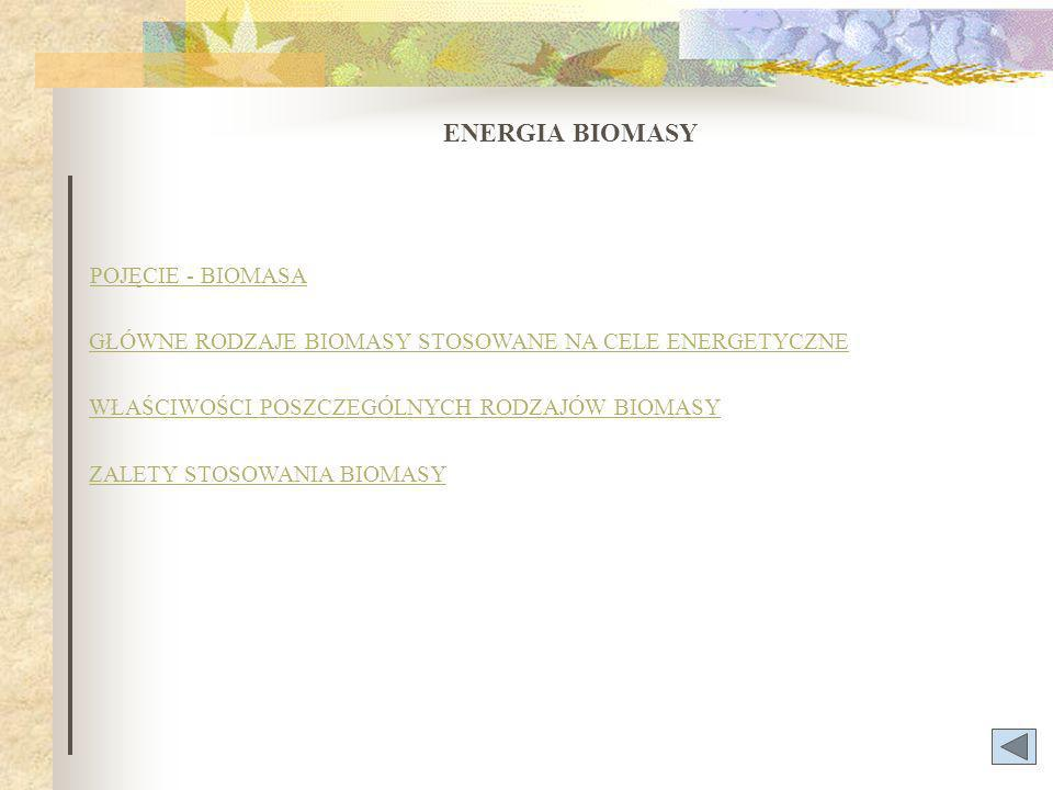 ENERGIA BIOMASY POJĘCIE - BIOMASA