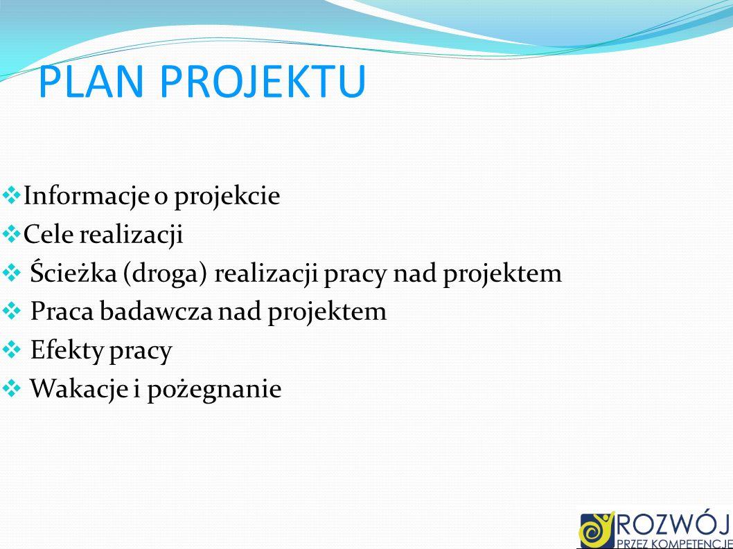 PLAN PROJEKTU Informacje o projekcie Cele realizacji
