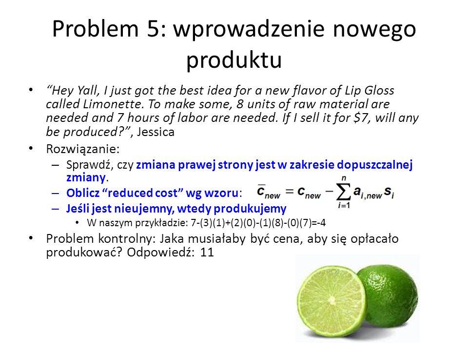 Problem 5: wprowadzenie nowego produktu