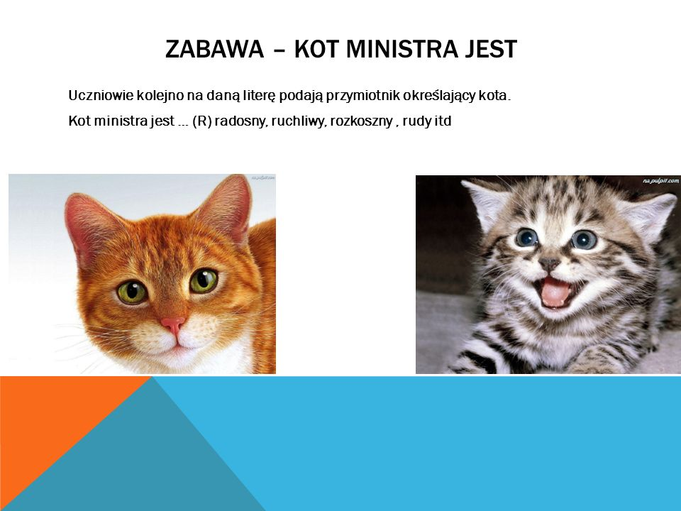 Zabawa – Kot ministra jest
