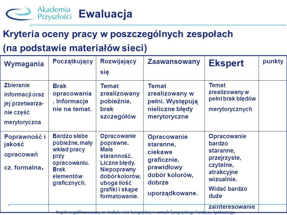 Ewaluacja Kryteria oceny pracy w poszczególnych zespołach Ekspert