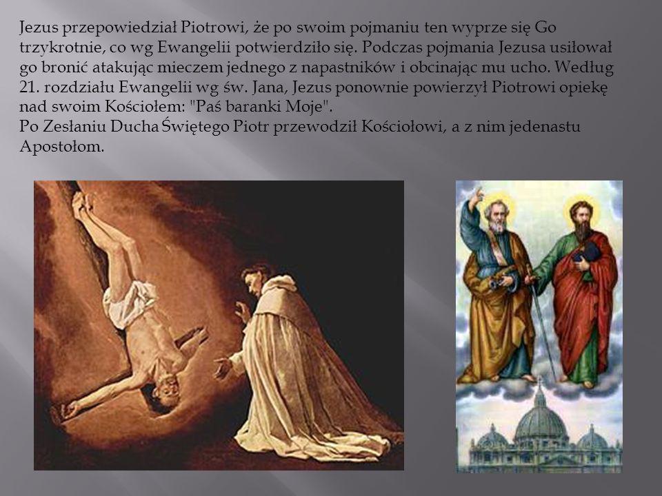 Jezus przepowiedział Piotrowi, że po swoim pojmaniu ten wyprze się Go trzykrotnie, co wg Ewangelii potwierdziło się. Podczas pojmania Jezusa usiłował go bronić atakując mieczem jednego z napastników i obcinając mu ucho. Według 21. rozdziału Ewangelii wg św. Jana, Jezus ponownie powierzył Piotrowi opiekę nad swoim Kościołem: Paś baranki Moje .