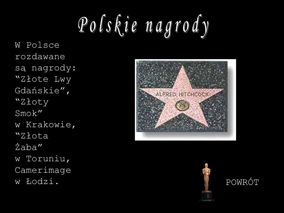Polskie nagrodyW Polsce rozdawane są nagrody: Złote Lwy Gdańskie , Złoty Smok w Krakowie, Złota Żaba w Toruniu, Camerimage w Łodzi.