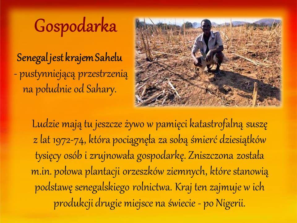 Gospodarka Senegal jest krajem Sahelu - pustynniejącą przestrzenią na południe od Sahary.