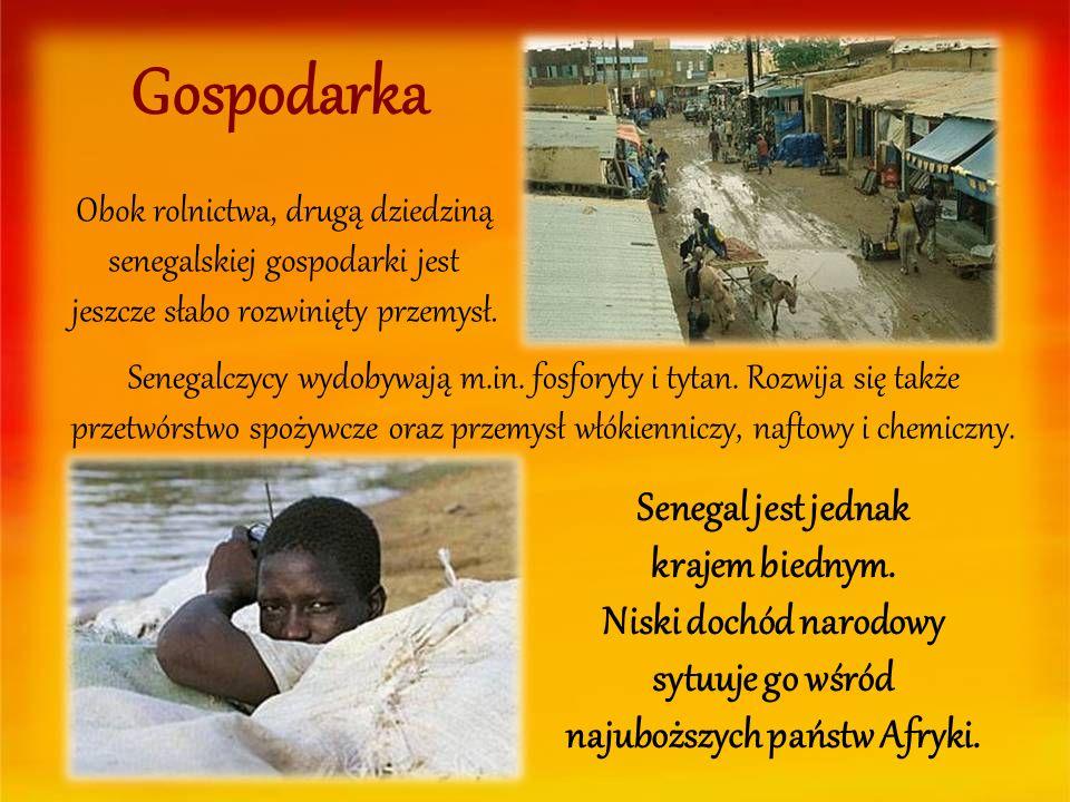 Gospodarka Obok rolnictwa, drugą dziedziną senegalskiej gospodarki jest jeszcze słabo rozwinięty przemysł.