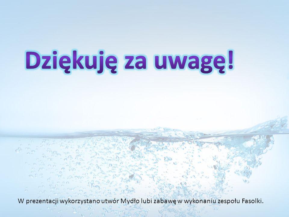 Dziękuję za uwagę! W prezentacji wykorzystano utwór Mydło lubi zabawę w wykonaniu zespołu Fasolki.