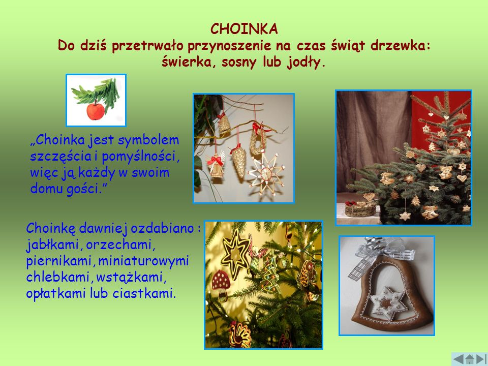 CHOINKA Do dziś przetrwało przynoszenie na czas świąt drzewka: świerka, sosny lub jodły.