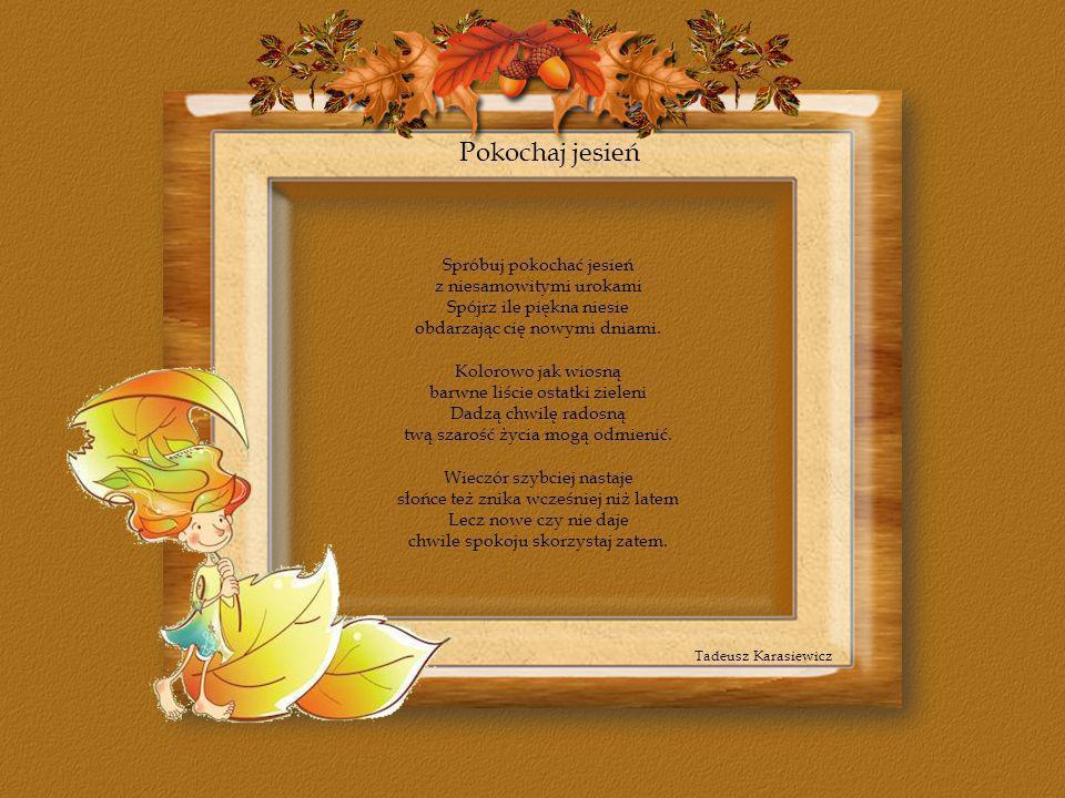 Pokochaj jesień