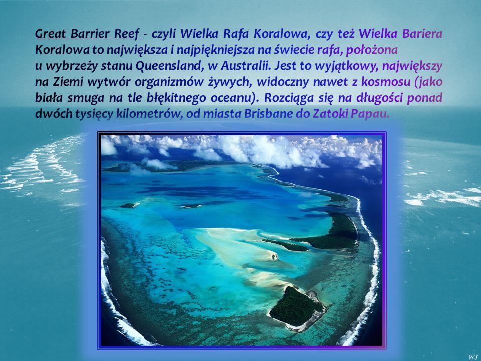 Great Barrier Reef - czyli Wielka Rafa Koralowa, czy też Wielka Bariera Koralowa to największa i najpiękniejsza na świecie rafa, położona