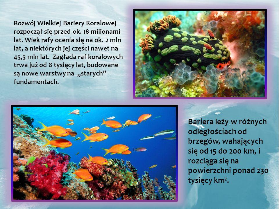 Rozwój Wielkiej Bariery Koralowej rozpoczął się przed ok