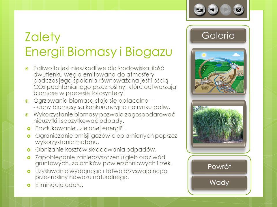 Zalety Energii Biomasy i Biogazu