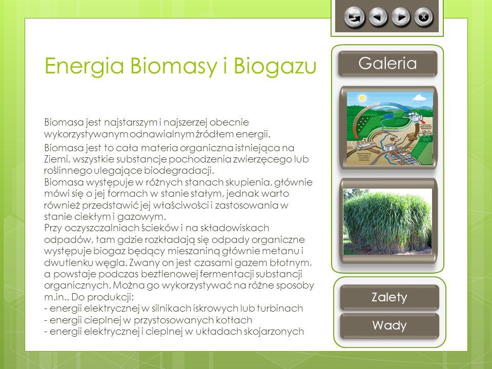 Energia Biomasy i Biogazu