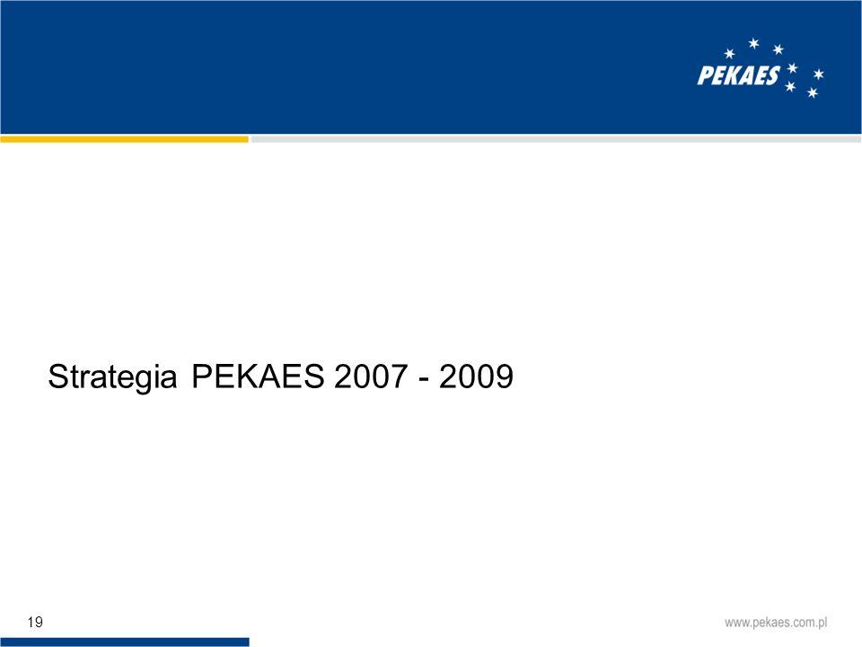 Strategia PEKAES 2007 - 2009