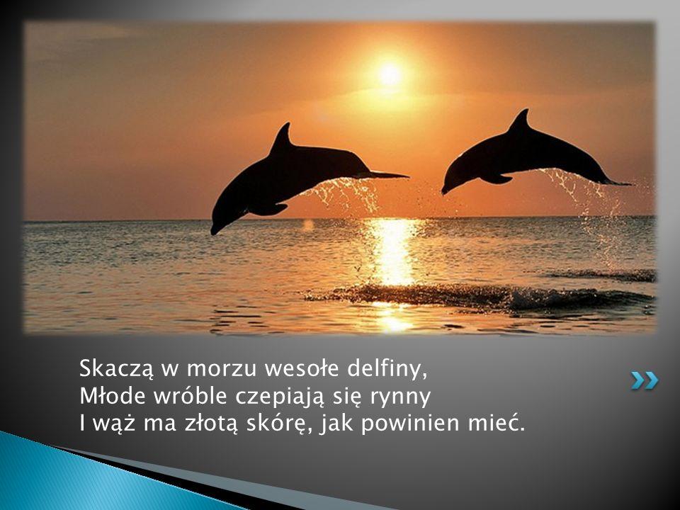 Skaczą w morzu wesołe delfiny, Młode wróble czepiają się rynny I wąż ma złotą skórę, jak powinien mieć.