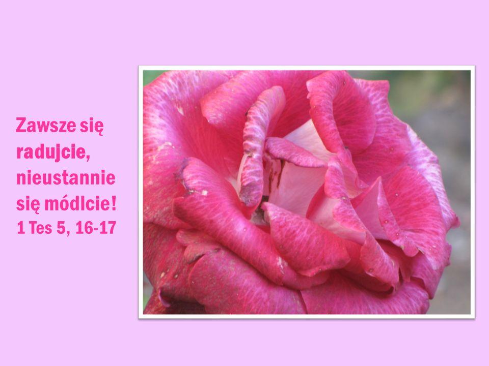 Zawsze się radujcie, nieustannie się módlcie! 1 Tes 5, 16-17