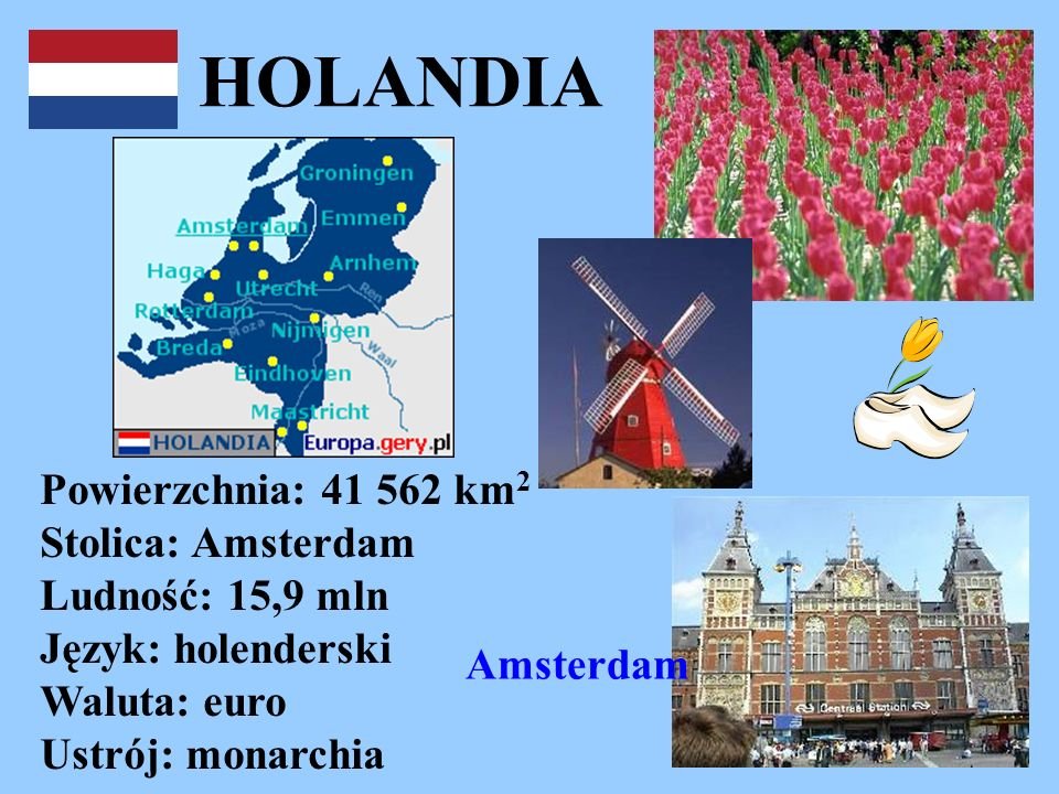 HOLANDIA Powierzchnia: 41 562 km2 Stolica: Amsterdam Ludność: 15,9 mln Język: holenderski Waluta: euro Ustrój: monarchia.