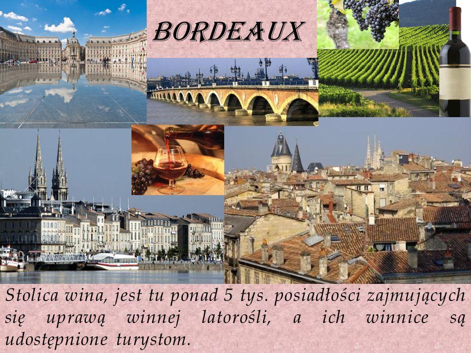 bordeaux Stolica wina, jest tu ponad 5 tys.
