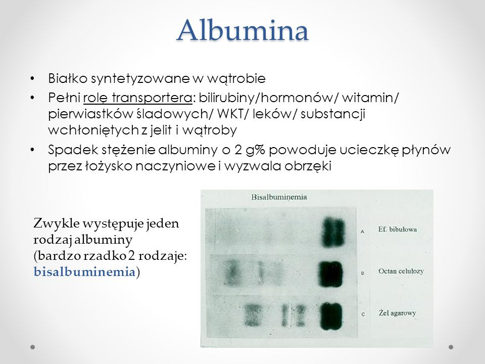 Albumina Białko syntetyzowane w wątrobie