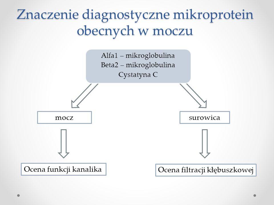 Znaczenie diagnostyczne mikroprotein obecnych w moczu