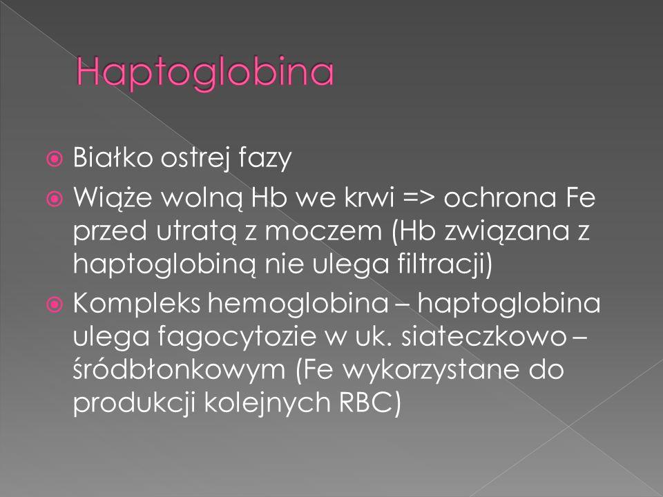 Haptoglobina Białko ostrej fazy
