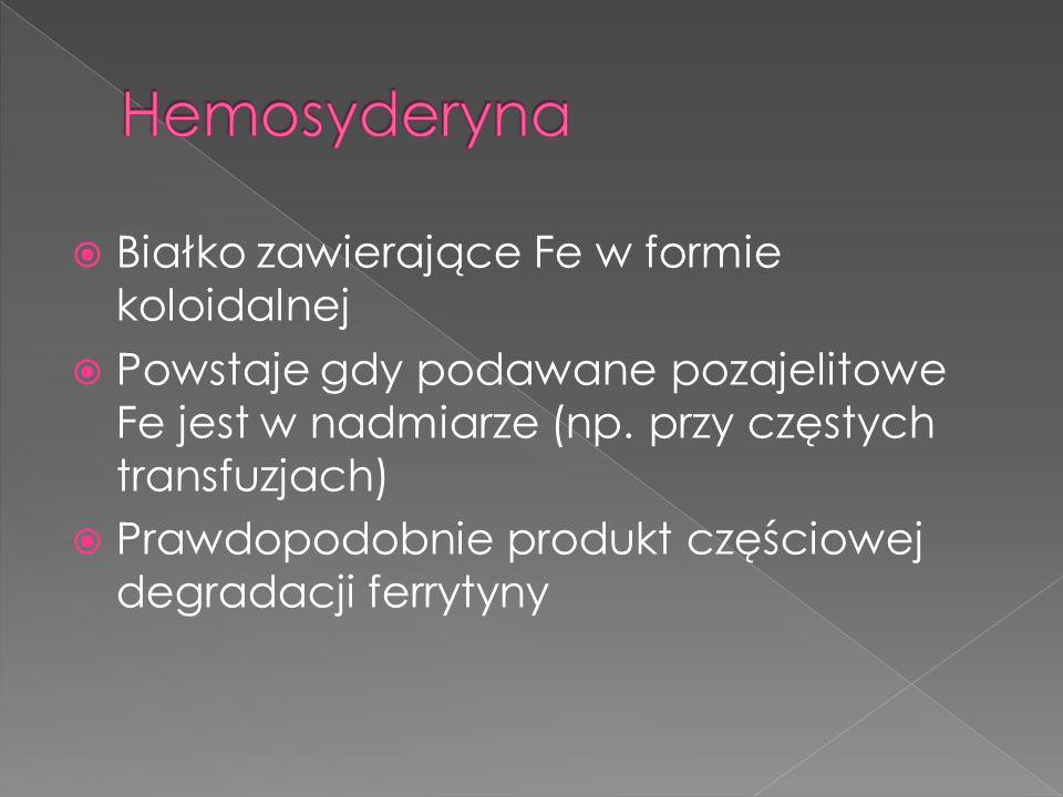 Hemosyderyna Białko zawierające Fe w formie koloidalnej