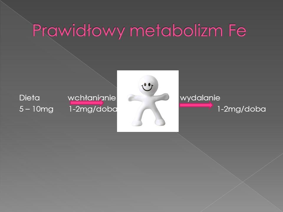 Prawidłowy metabolizm Fe