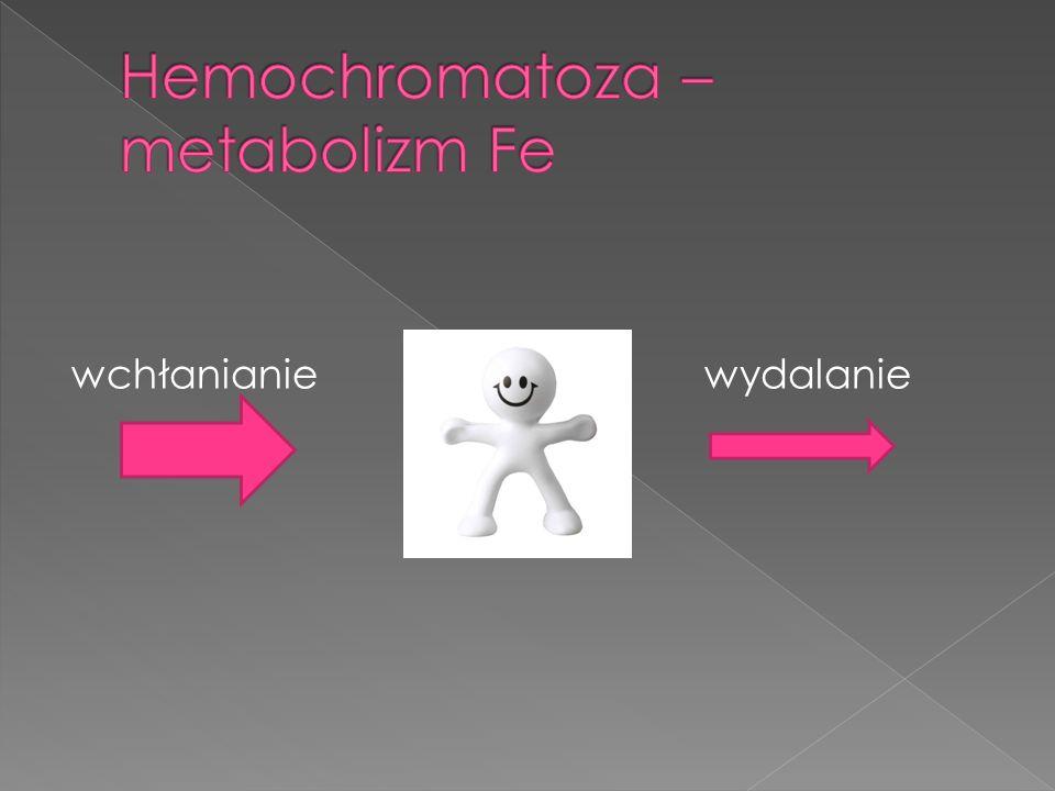 Hemochromatoza – metabolizm Fe