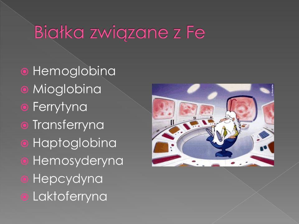 Białka związane z Fe Hemoglobina Mioglobina Ferrytyna Transferryna