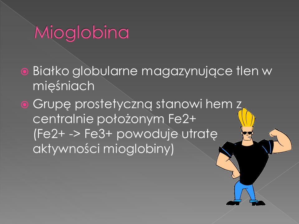 Mioglobina Białko globularne magazynujące tlen w mięśniach