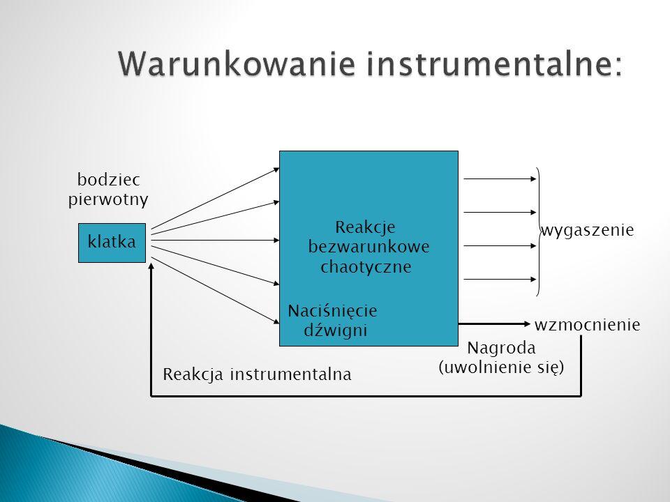 Warunkowanie instrumentalne: