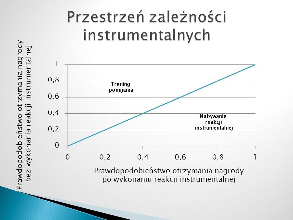 Przestrzeń zależności instrumentalnych