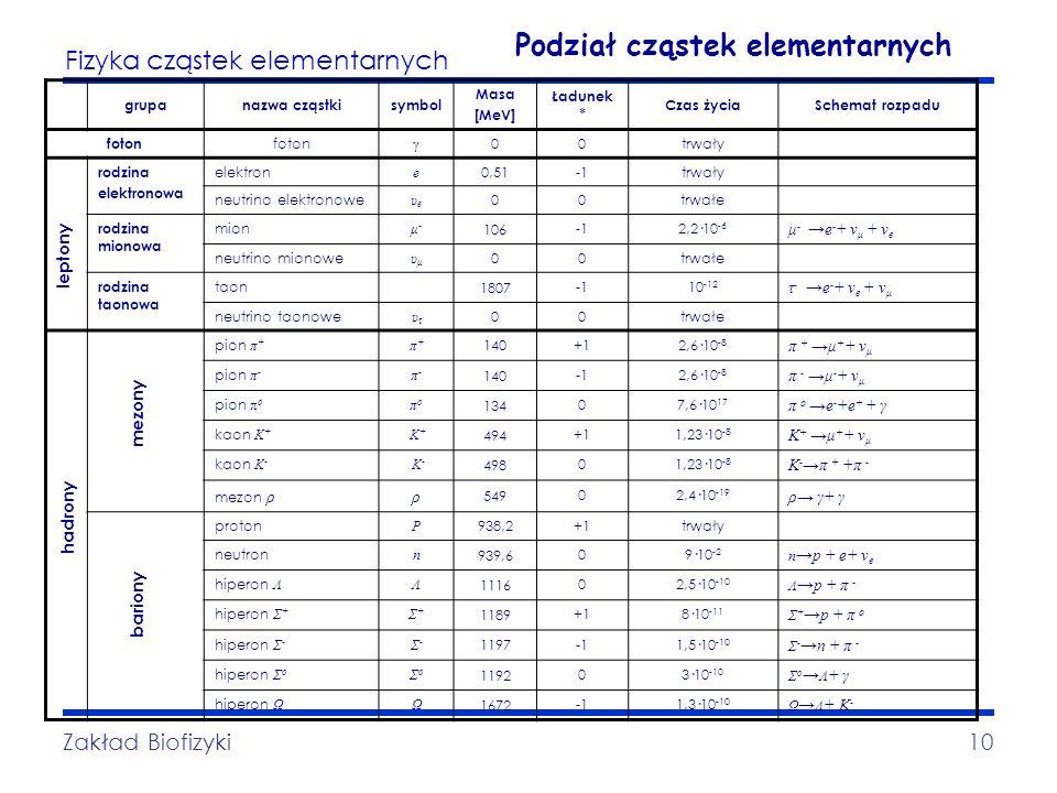 Podział cząstek elementarnych
