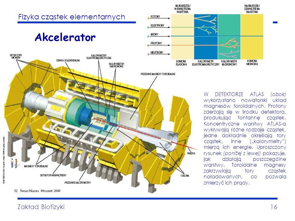 Akcelerator Zakład Biofizyki