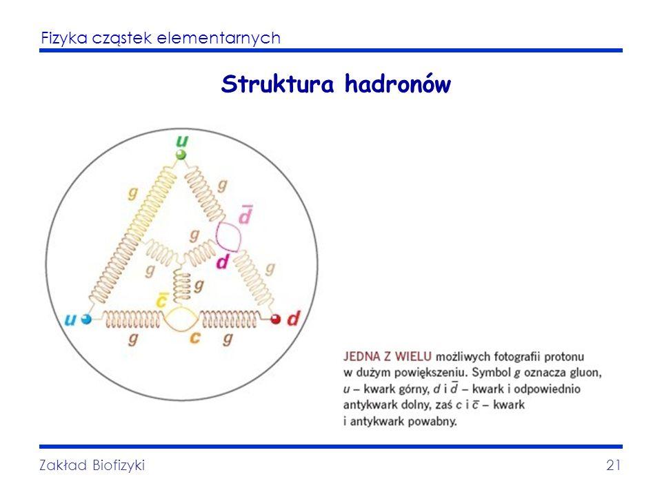 Struktura hadronów Zakład Biofizyki