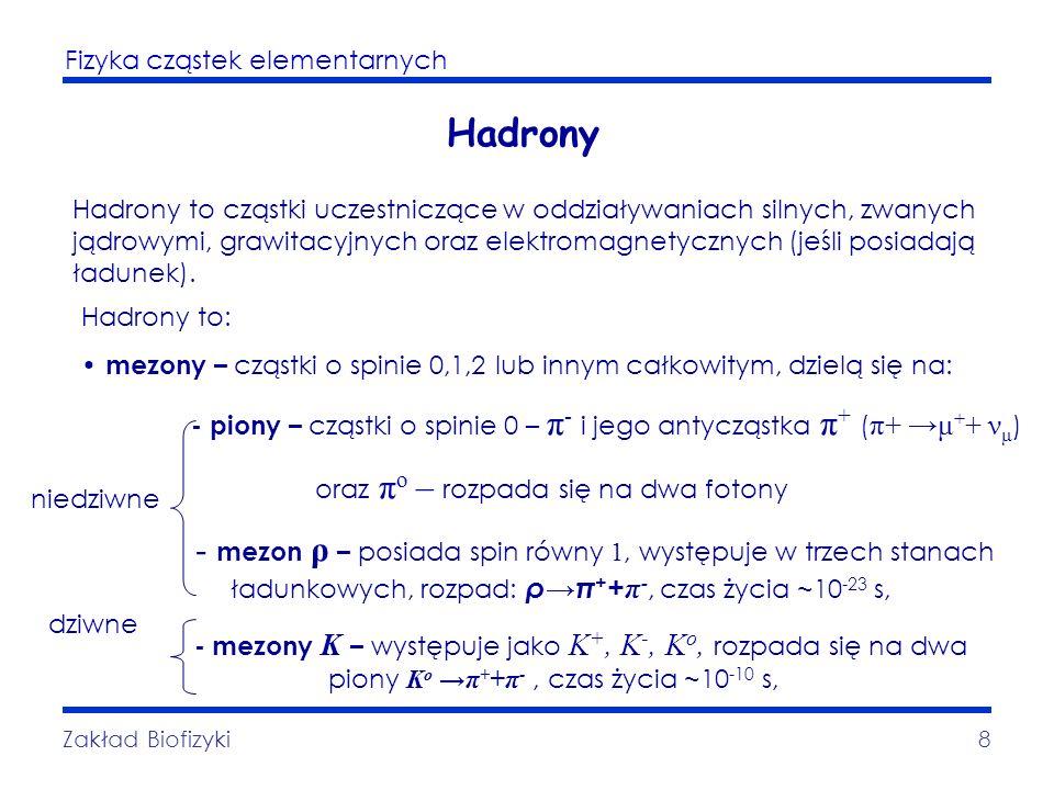 Hadrony