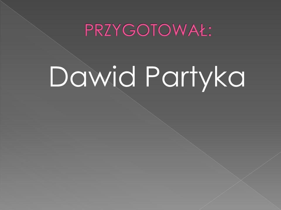 PRZYGOTOWAŁ: Dawid Partyka