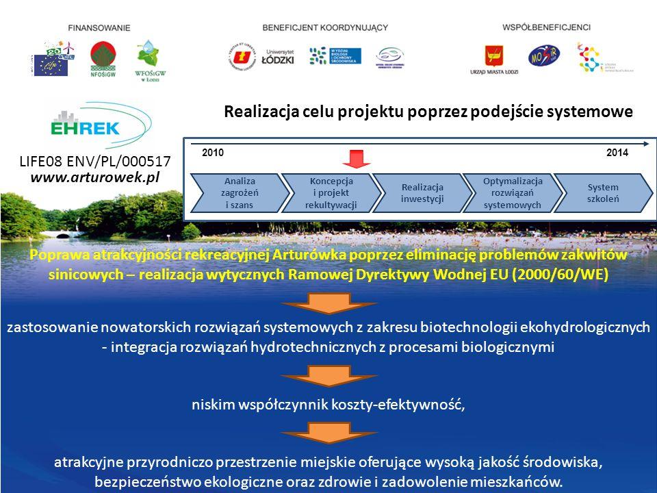 Realizacja celu projektu poprzez podejście systemowe