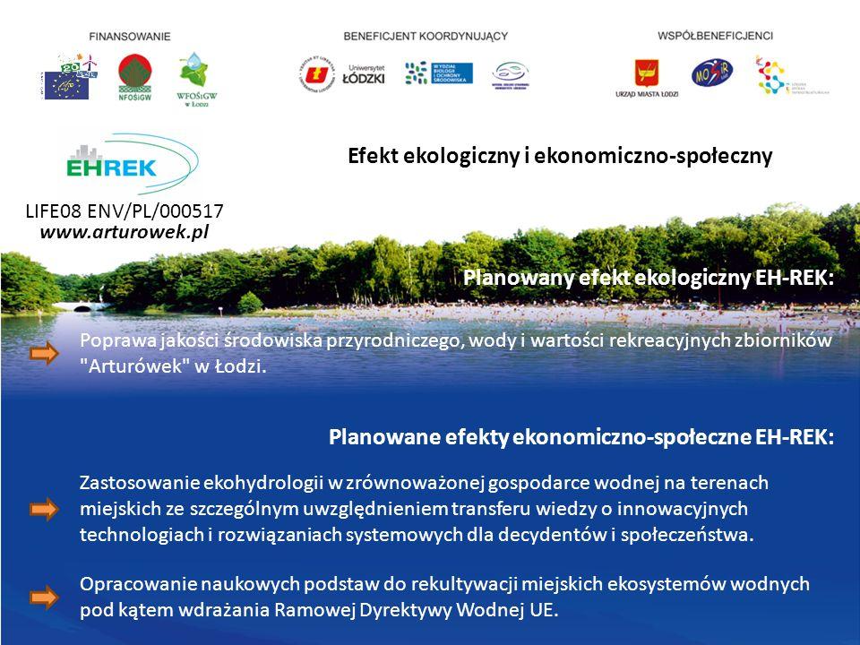 Efekt ekologiczny i ekonomiczno-społeczny