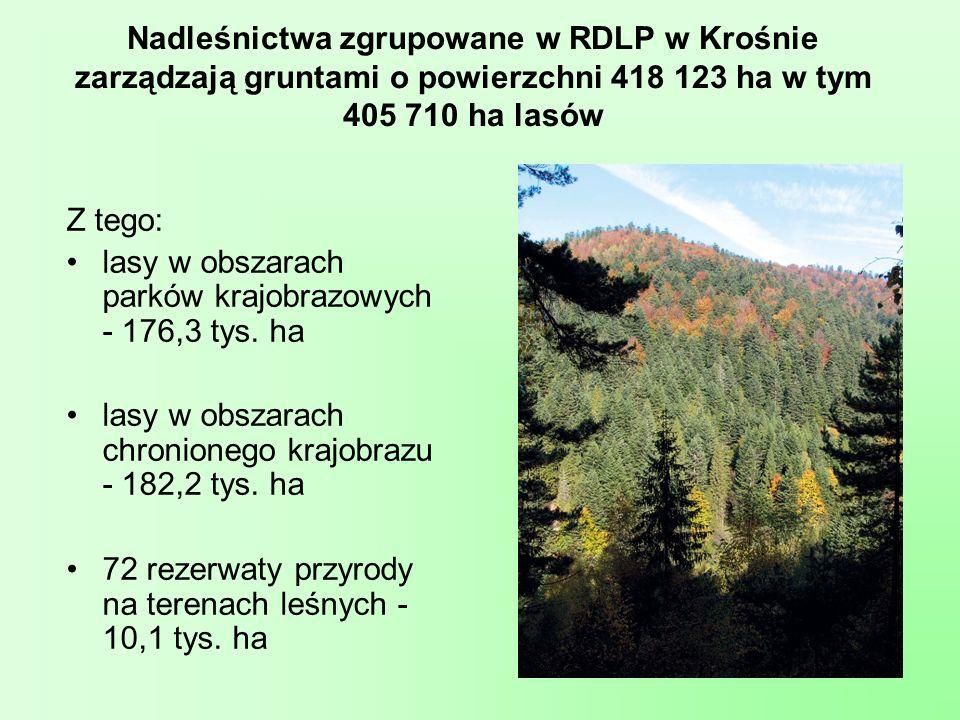 Nadleśnictwa zgrupowane w RDLP w Krośnie zarządzają gruntami o powierzchni 418 123 ha w tym 405 710 ha lasów
