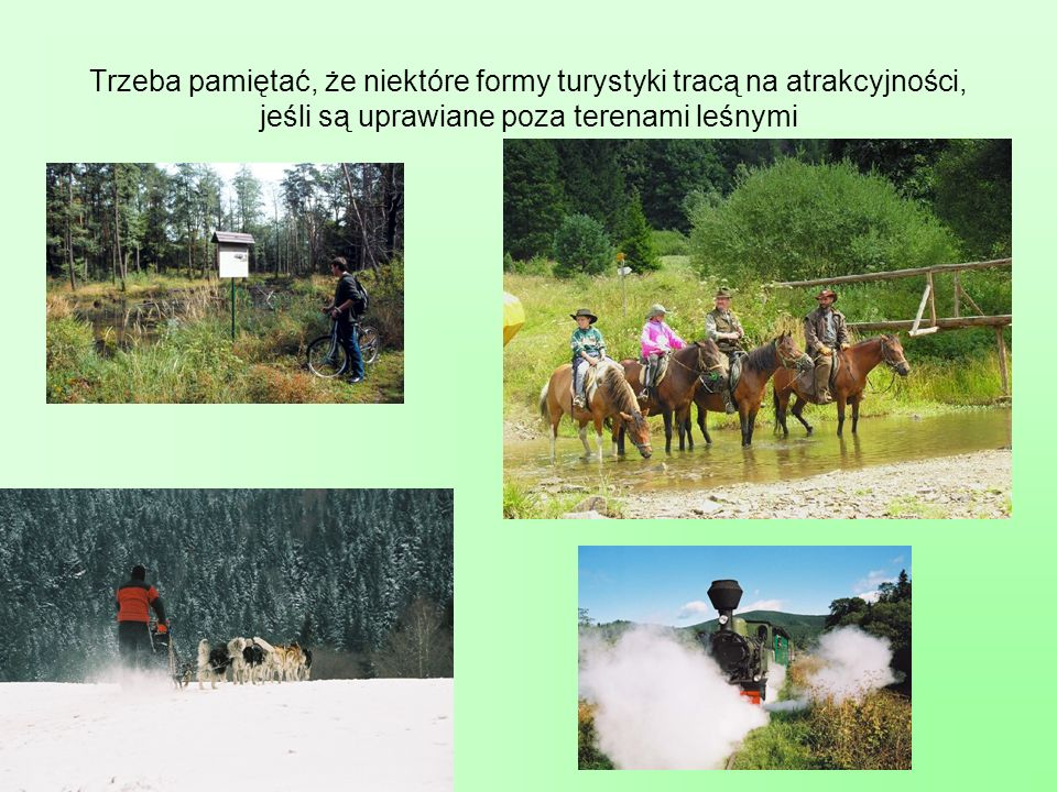 Trzeba pamiętać, że niektóre formy turystyki tracą na atrakcyjności, jeśli są uprawiane poza terenami leśnymi