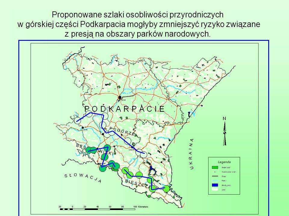 Proponowane szlaki osobliwości przyrodniczych w górskiej części Podkarpacia mogłyby zmniejszyć ryzyko związane z presją na obszary parków narodowych.