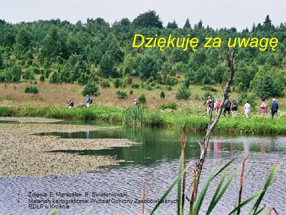 Dziękuję za uwagę Zdjęcia: E. Marszałek, R. Światoniowski.