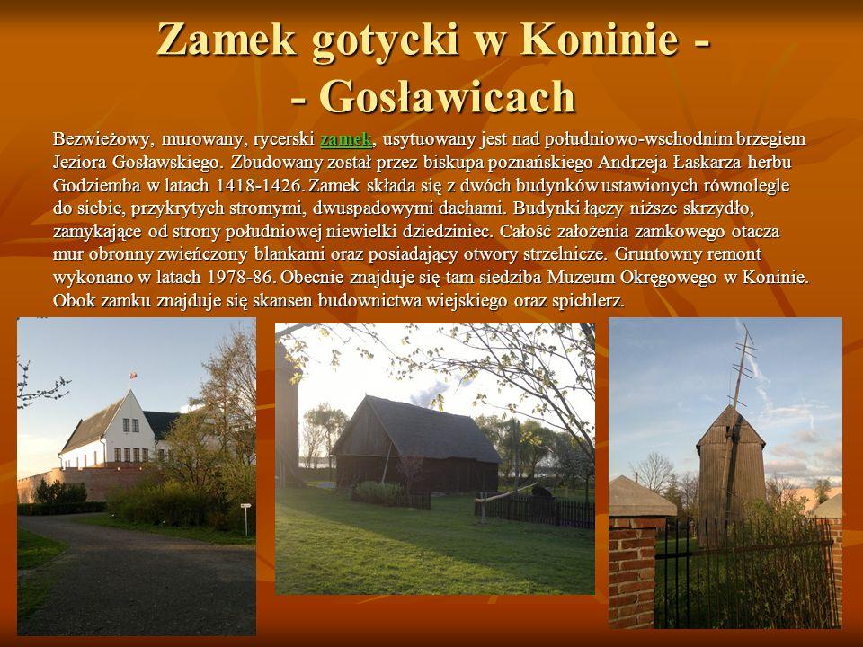 Zamek gotycki w Koninie - - Gosławicach