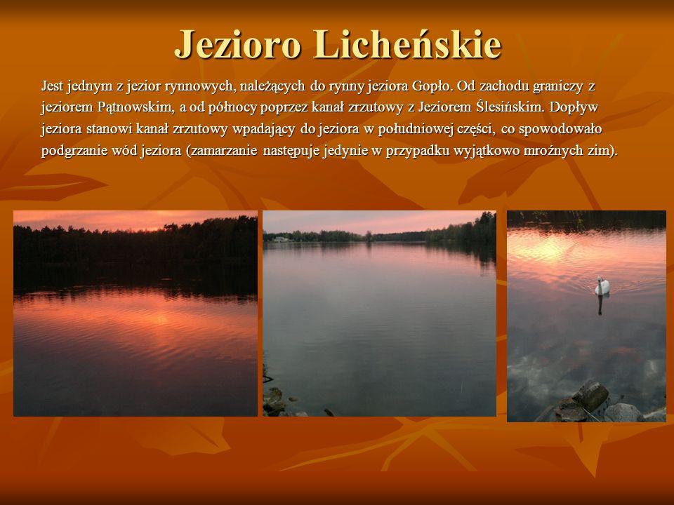 Jezioro Licheńskie Jest jednym z jezior rynnowych, należących do rynny jeziora Gopło. Od zachodu graniczy z.