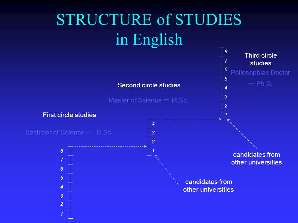 STRUCTURE of STUDIES in English