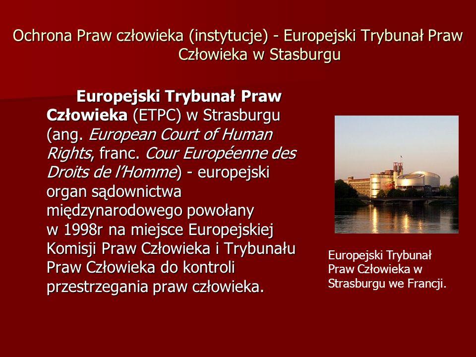 Ochrona Praw człowieka (instytucje) - Europejski Trybunał Praw Człowieka w Stasburgu