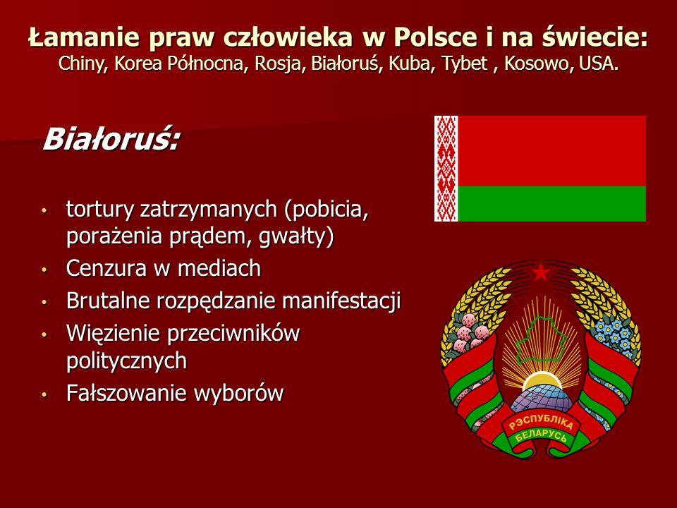 Łamanie praw człowieka w Polsce i na świecie: Chiny, Korea Północna, Rosja, Białoruś, Kuba, Tybet , Kosowo, USA.