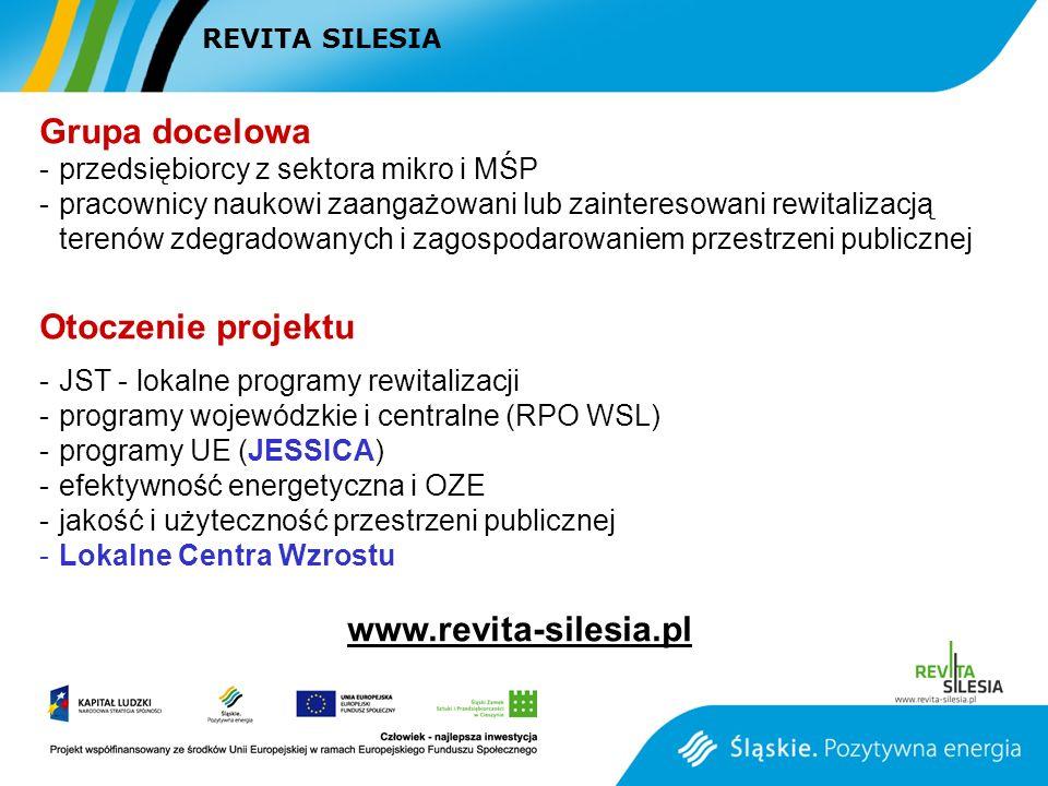 Grupa docelowa Otoczenie projektu www.revita-silesia.pl